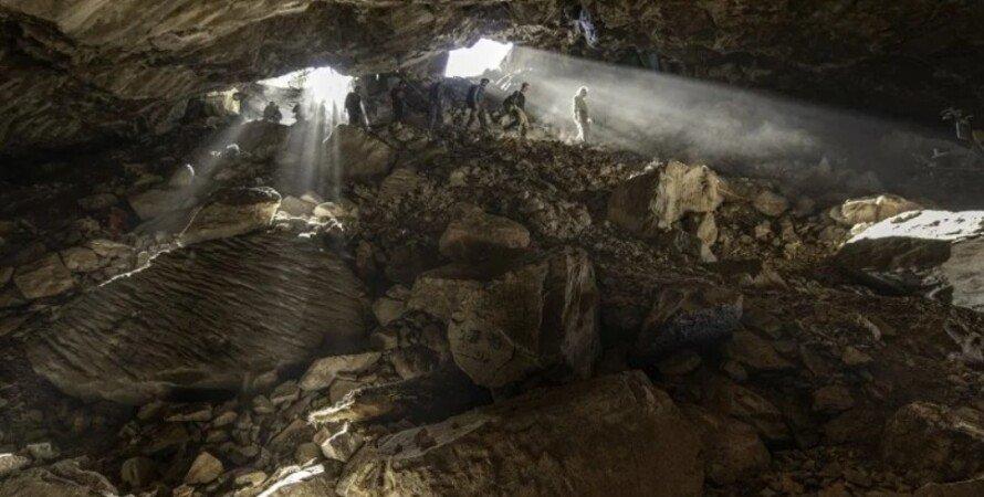 ДНК, медведи, пещера, Мексика