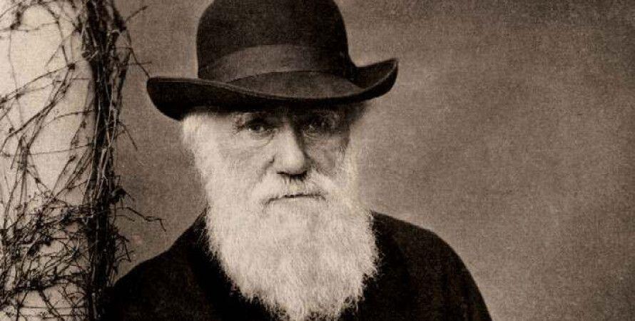 Чарльз Дарвин / Фото: wikimedia.org