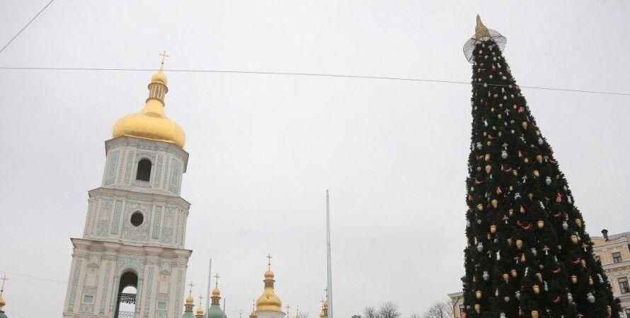 Главная елка, Софийская площадь, новый год, Киев, рождество, шляпа