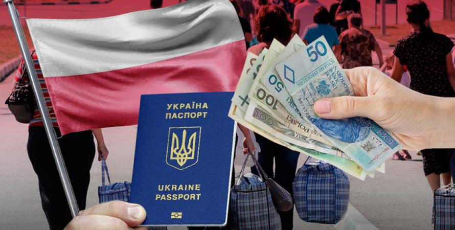 Украинцы в Польше, польша, украинцы, трудовая миграция, заробитчане, вид на жительство