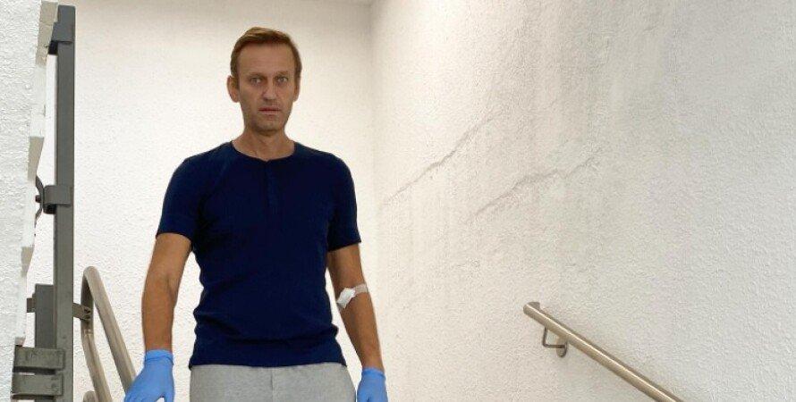 навальный, алексей навальный, россия, еспч