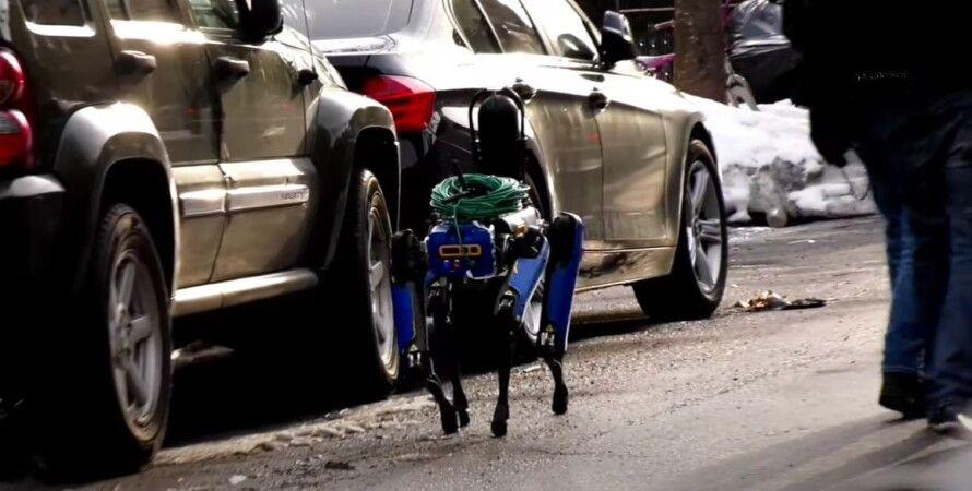 робот-пес, Boston Dynamics, полиция