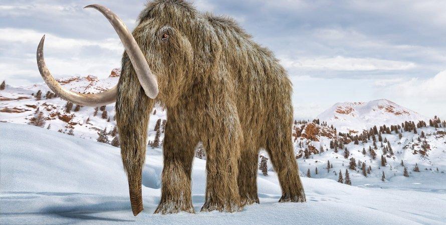 шерстистий мамонт, сніг, зима, гори, малюнок