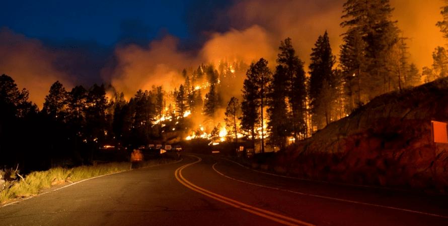 лісова пожежа, Челябінська область, фото