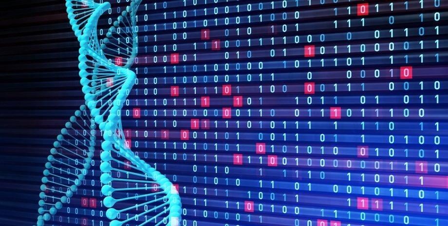 ДНК, код