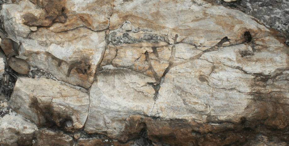 норы, ископаемые животные, кварцит, гора