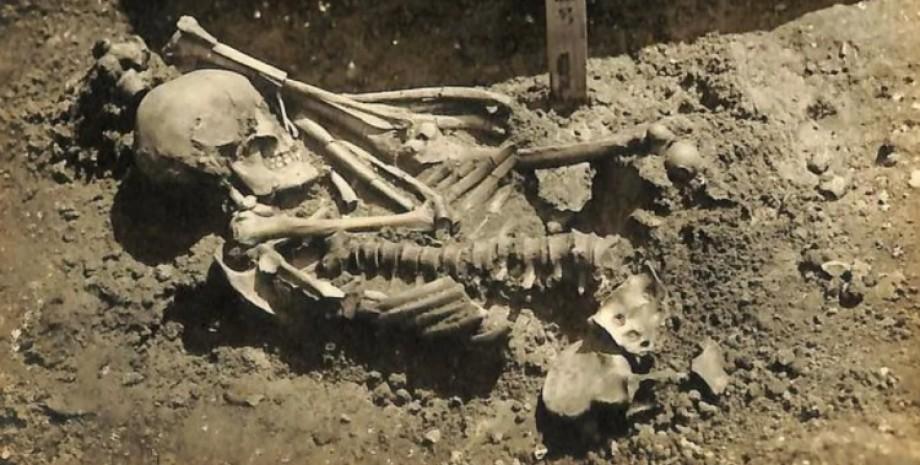скелет, японія, народ дземон, травми