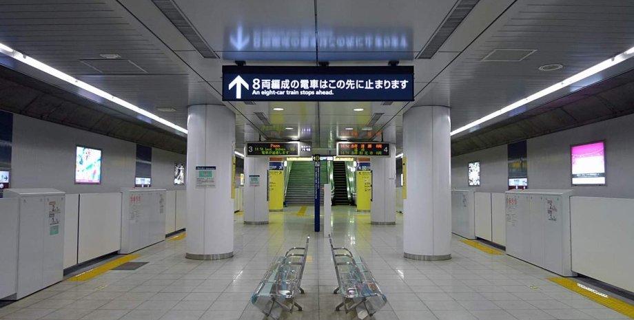 Землетрус, Японія, Токіо