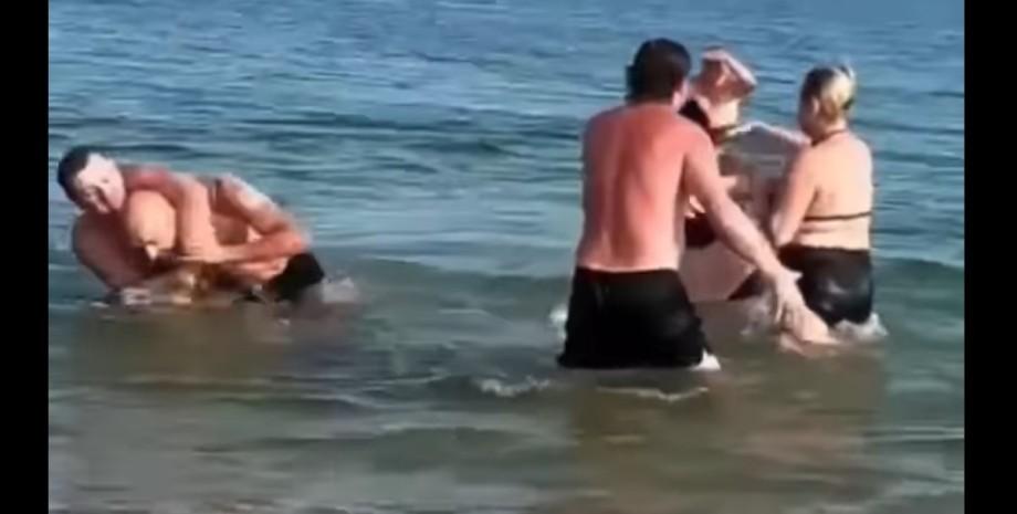 Бердянск, медузы, драка,