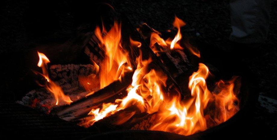 багаття, вогонь, еволюція людини