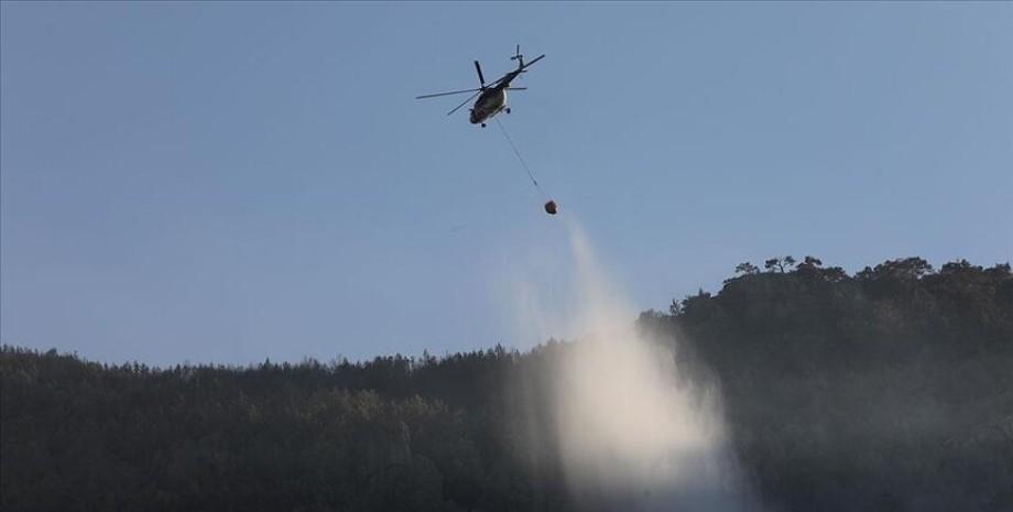 пожежний вертоліт, ліс, фото