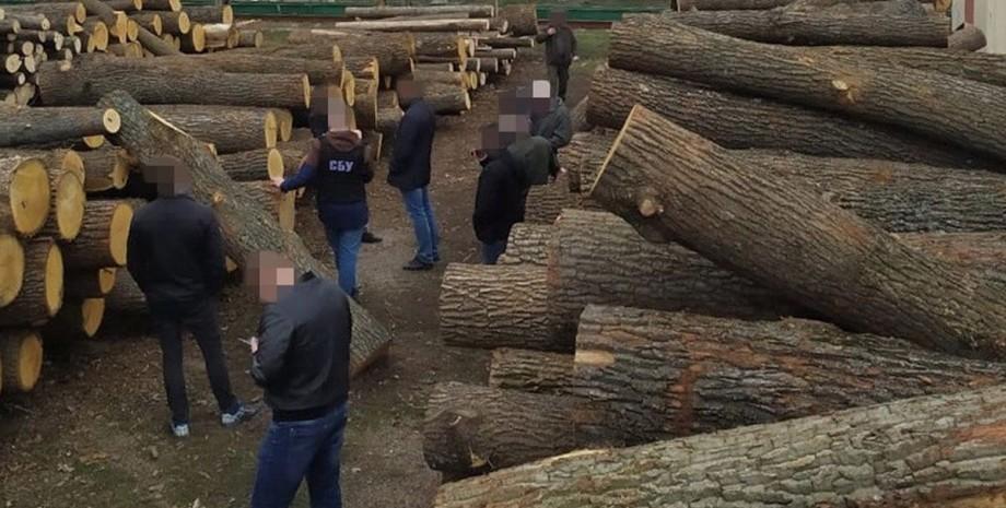 СБУ, лес, древесина,