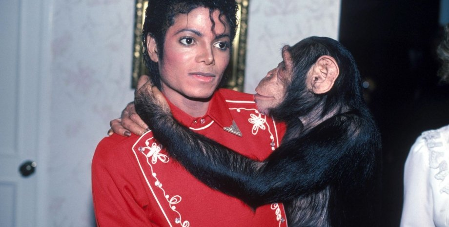 Майкл Джексон и Бабл/Фото: The Hollywood reporter