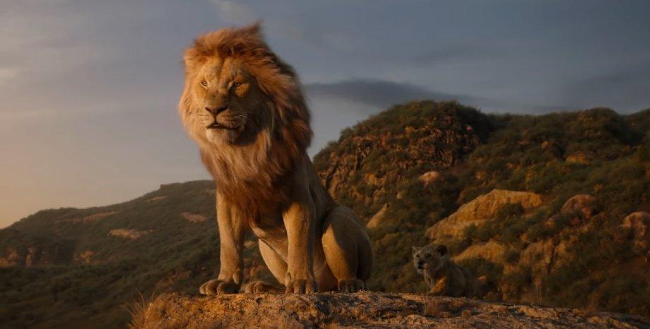 Фото: Скриншот из видео Walt Disney Studios