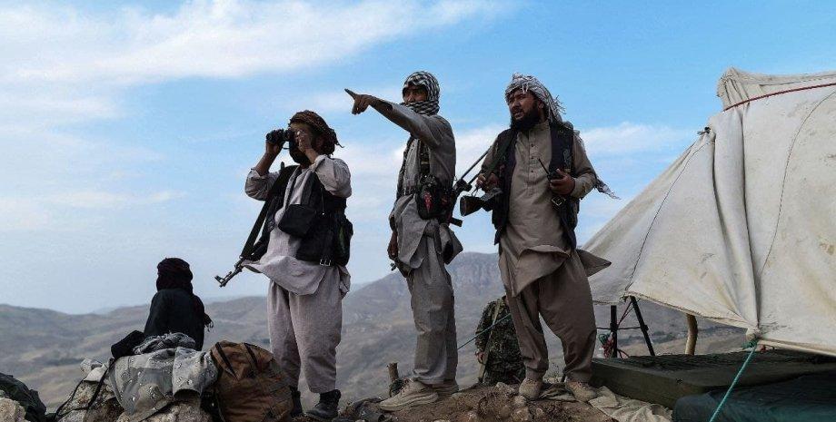 Народная милиция Афганистана, наступление Талибана на Кабул