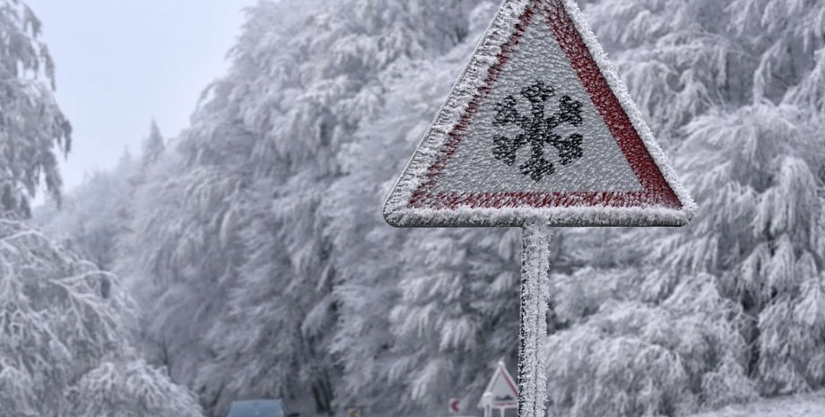 Фото: ozvest.ru