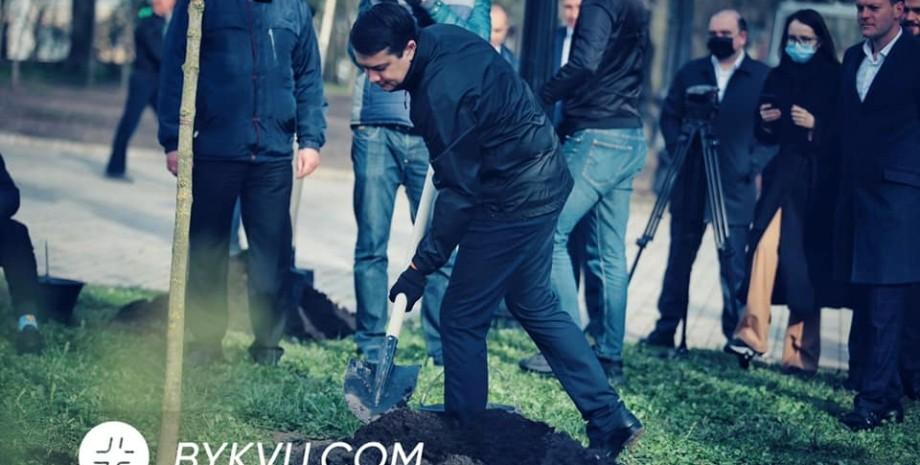 депутаты посадили деревья, высадка деревьев в раде