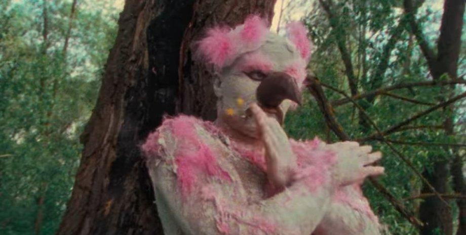 рожевий фламінго, кадр з кліпу