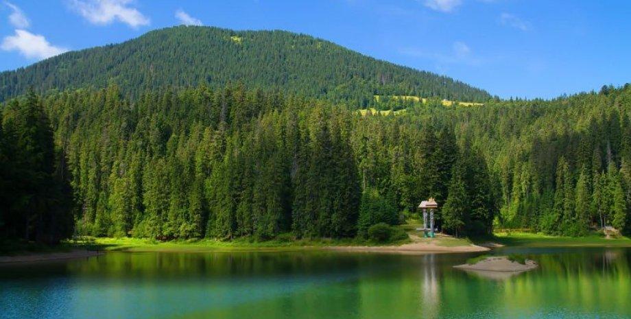Озеро Синевир / Фото из открытых источников