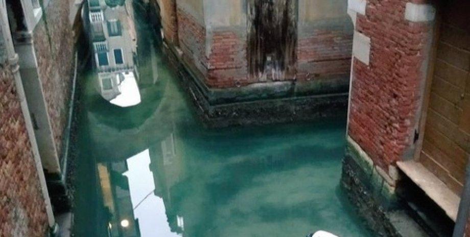 Фото: Clean Venice/Twitter