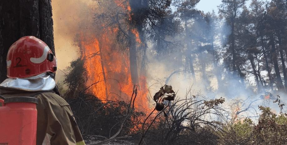пожежа в Греції, лісові пожежі, ГСЧС, пожежні, рятувальники