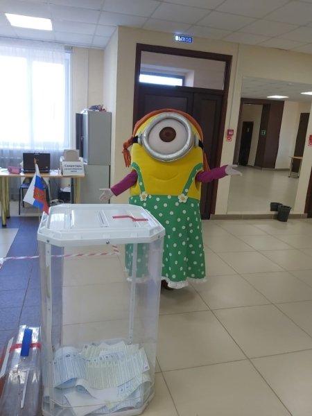 Выборы, миньон, Госдума
