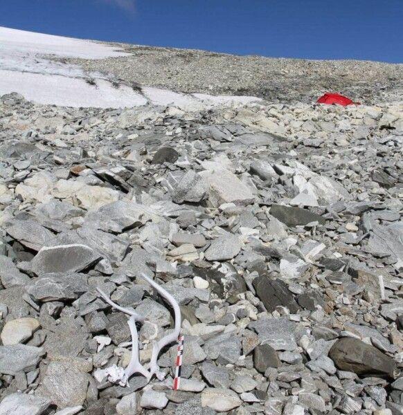 Оленьи рога на леднике Лангфонн