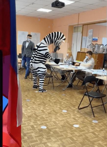 Госдума, выборы, костюмы